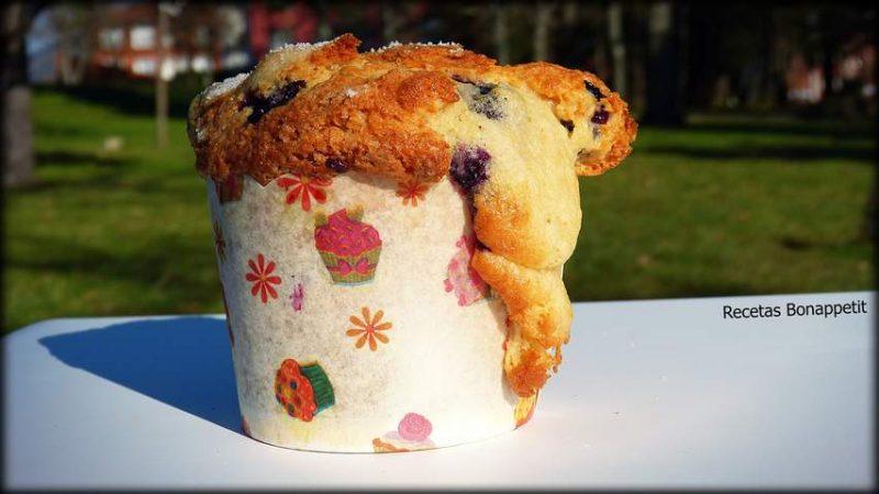 Muffins de árandanos